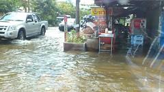 thaiflood_291020113