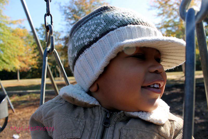 Fall Morning at the Park