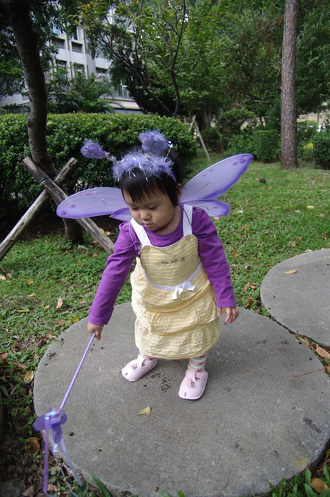 Halloween`s Fairy