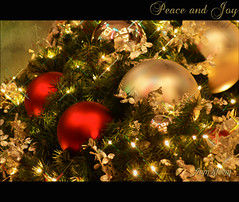 Peace And Joy to all of you, my friends (Aum Kleem) Tags: christmas xmas light color lights colours decorative decoration noel sparkle yule colourful christmaseve christmasday yuletide christmasnight christmastide peaceandjoy aumkleem