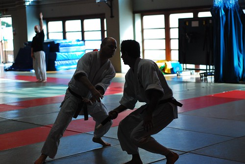 6299416405 fd7b747eda London & Hove Shodokan Aikido Festival 2011