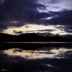 The dangers of roadside photography - Loch Venachar Dawn (David Hannah) Tags: morning trees light sun sunlight black water glass night clouds reflections river dawn scotland fishing flood alba o scottish victoria calm glen na queen leny loch trossachs brig turk gloaming eas uisge teith garbh venachar invertrossachs bheannchair welcomeuk trosaichean gobhain