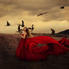 mother may i (brookeshaden) Tags: red storm motion field birds clouds fly blood wings flight fabric brookeshaden texturebylesbrumes allpicsaremyownincludingthebirdsminustheawesometexturebylesbrumes