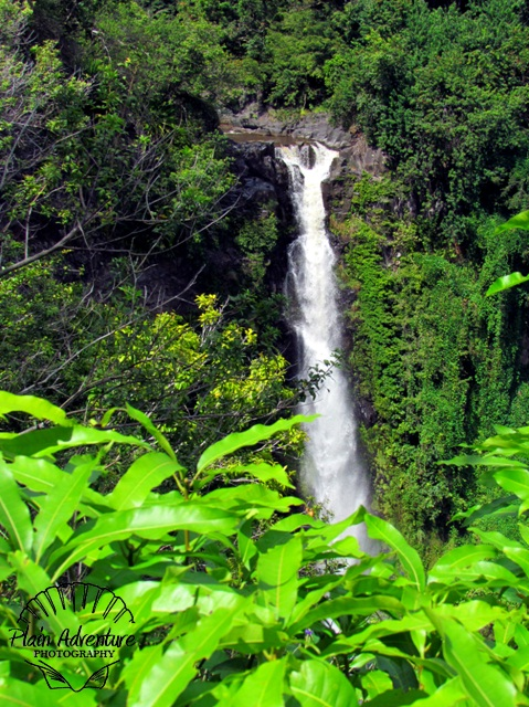 Road to Hana – Maui