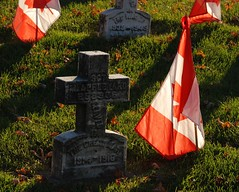 Remember I (jah32) Tags: november red white canada remember cross flag remembranceday canadianflag