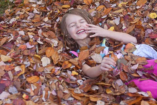 leaves11