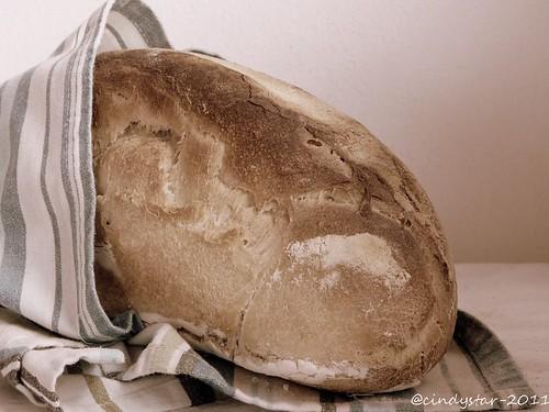 pane toscano lievitazione naturale-tuscan sourdough bread-bww18