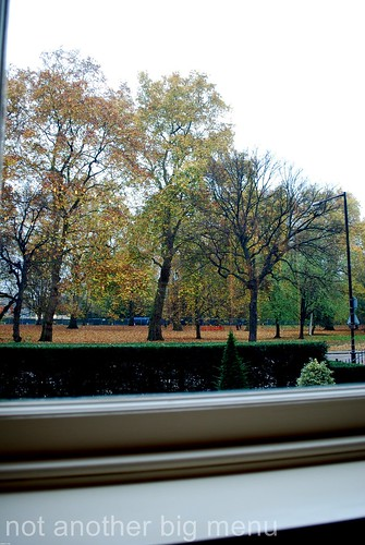 View of Hyde Park From Dinner by Heston