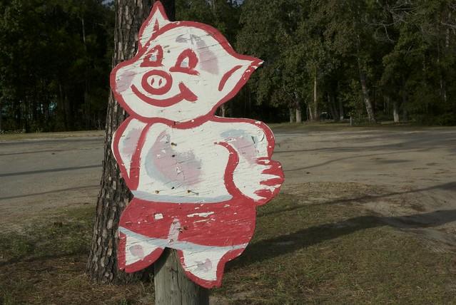 Georgia Pig 2