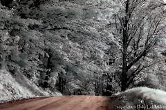 Country Road Summit (philipleemiller) Tags: nature vermont nikond70 lakes fallfoliage valley infrared frostymorning mapletrees countryroads pomfret topazclean