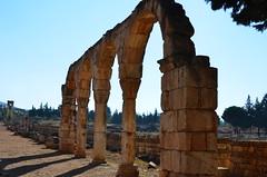 Anjar, Umayyad city, al-Walid I, 705-15, along the decumanus maximus (3) (Prof. Mortel) Tags: lebanon umayyad anjar