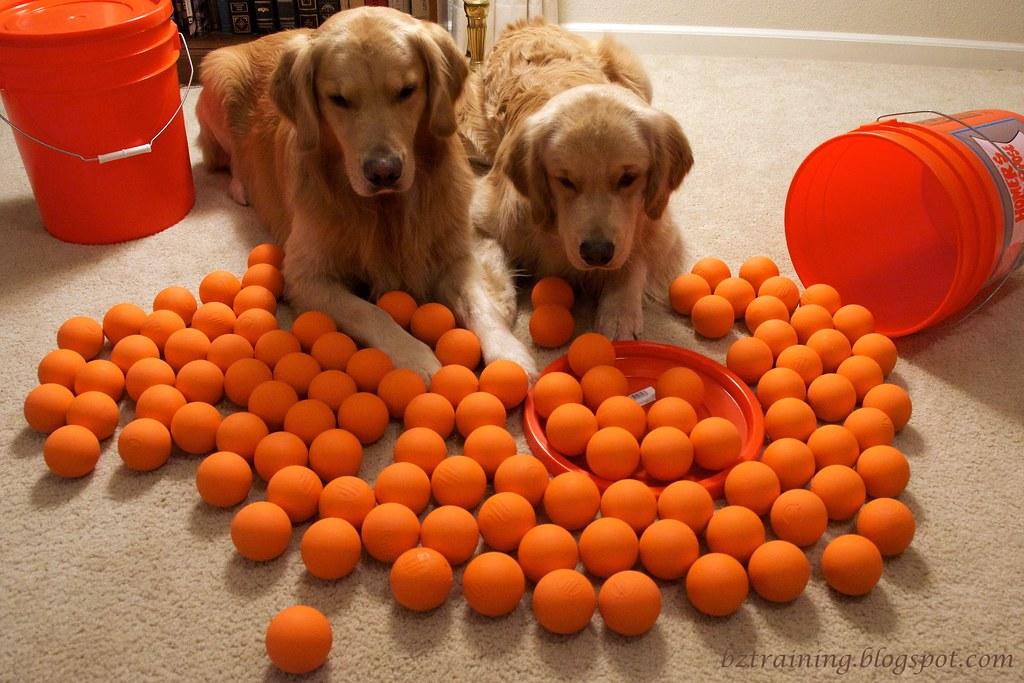 Too Many Balls?