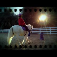 November 7, 2011 {365-311} (dmacphoto) Tags: california horse sun sunlight girl oneaday sunshin