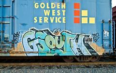 Gsouth (TheHarshTruthOfTheCameraEye) Tags: california train graffiti network northern gs freight fs wh tko stv benching gsouth