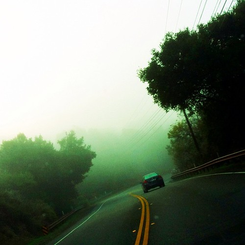 Foggy canyon drive