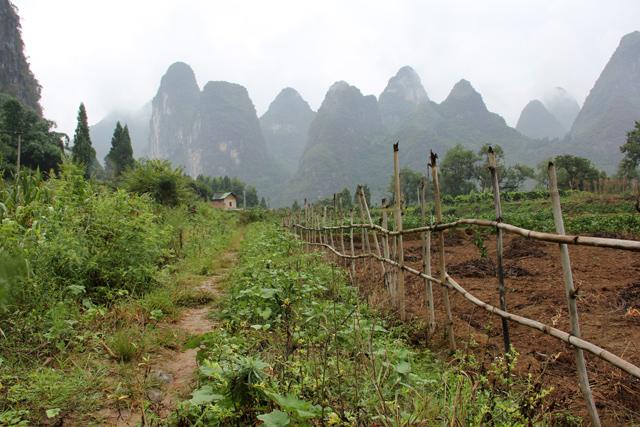 Hike in China