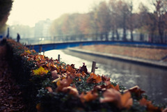 Gent (Joe[insanely]) Tags: autunno gent belgio