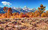 Autumn in Jackson Hole (Jeff Clow) Tags: autumn mountains fall nature landscape bravo seasons wyoming tetons grandtetonnationalpark jacksonholewyoming dcptsept11