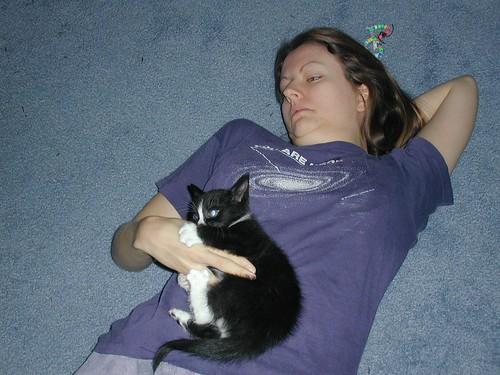 DD & CAT