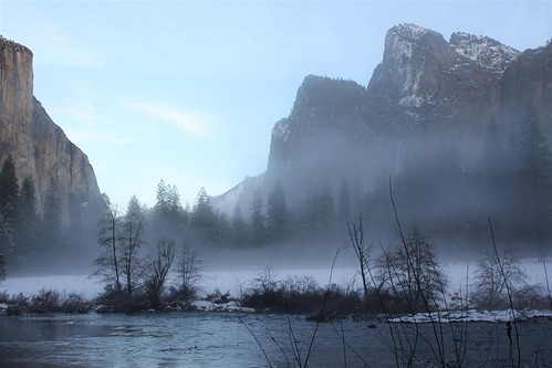 Cold and foggy at Yosemite National Park, California in the late afternoon during winter