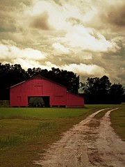 Red Barn and Storm Clouds:  Edgecombe County, NC (EdgecombePlanter) Tags: storm clouds rural nc farm peaceful redbarn countryroad oldbarn dirtpath edgecombecounty