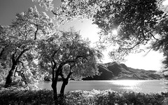 IMG_9212bw (Swaranjeet) Tags: vacation india canon landscape switzerland europe photos wideangle 7d thane mumbai scape lugano singh sjs 2011 ultrawideangle eoe apsc ef1635 swaran wideanglezoom ef1635mmf28liiusm canonef1635mmf28lii eos7d sjsphotography eos5dmkii ultrawideanglezoom swaranjeet swaranjeetsingh swaranjeetphotography sjsvision