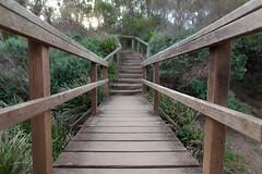 MV-Headland-Walkway (gavcam) Tags: sydney australia northernbeaches monavalebeach
