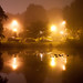 Night Fog - Albany, NY - 2011, Sep - 06.jpg by sebastien.barre
