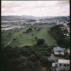 pucky_golf_course (modern kgaku) Tags: houses newzealand color 120 6x6 film vintage mediumformat golf landscape view toycamera course wellington strathmore residential miramar boxcamera outdated pucky testroll ising agfaportrait160 isingpuckyi aotaroa