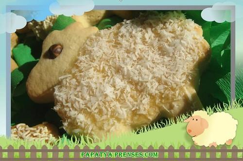 koyun kurabiye-
