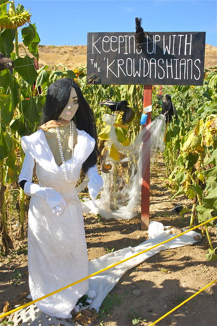 Scarecrows in pumpkin patch