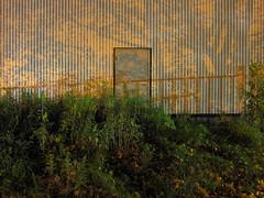 Untitled #7183 (Jan Zimmerman) Tags: door longexposure nightphotography urban orange building nature night landscape sweden nattbilder