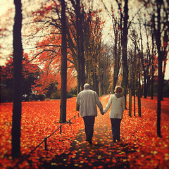 """Love is composed of a single soul inhabiting two bodies."" (www.juliadavilalampe.com) Tags: autumn trees love germany square hojas deutschland couple arboles pareja amor herbst alemania otoo liebe mnster"
