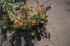 Super 8 Camera in some bushes (old_skool_paul) Tags: old morning blue autumn trees portrait england sky sun colour macro green overgrown sunshine shop photoshop self canon paul eos high october moments factory fuji minolta skateboarding bright kodak no buckinghamshire stamp iso skool 200 skate printing snowboard tele shooting 5000 sputnik tamron bucks derelict super8 liability printers abandonned 135mm wycombe harrisons paragon 64t film35mm 2011 chinnon delarue 01494 tosner wwwliabilityskateblogspotcom oldskoolpaul sonsuk