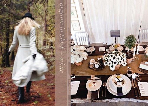 organic in black and white tabletop inspiration fall