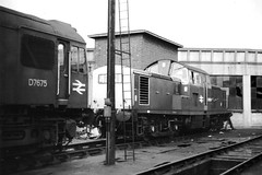 Carlisle Upperby. (Kingfisher 24) Tags: england clayton roundhouse engineshed halina35x diesellocomotives brtype2 carlisleupperby d8500 d7675