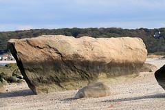 Flat Rock (sandy richard) Tags: longisland beaches wildwood wildwoodstatepark sandyrichard sandrarichard