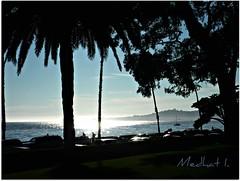 "Coastal Views! P1050075  ""Mirror Effect!"" (medaibl) Tags: ocean california gardens pacific palmtrees cypress fountains santabarbra medhathi coastalandwaterviewsbymi"