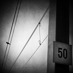These wires, my watchtower (Vangelis Bagiatis) Tags: bird texture lensbaby square pole wires