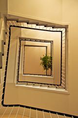 (Philipp Gtze) Tags: stair treppe magdeburg ottovonguerickeuniversitt
