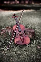 My Violin (Jesús Gutiérrez Gómez) Tags: digital canon photography eos rebel colombia violin bow string strings xsi medellín antioquia fotografía jesusgutierrezgomez