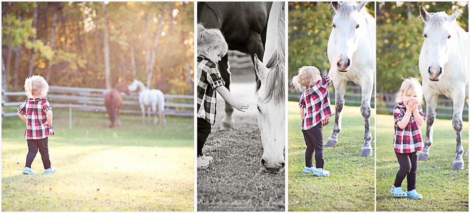 horse.blog (5 of 5).jpg
