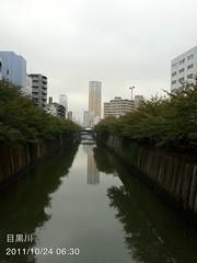 朝散歩(2011/10/24 6:30): 目黒川