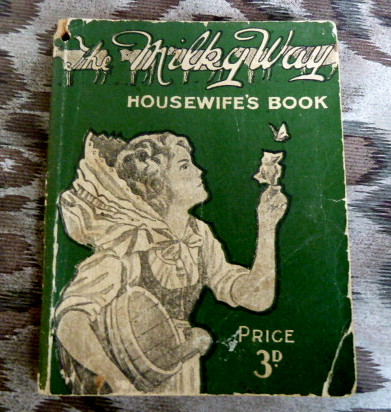 F5N From 1914 Nestles milk advertising cook / recipe book