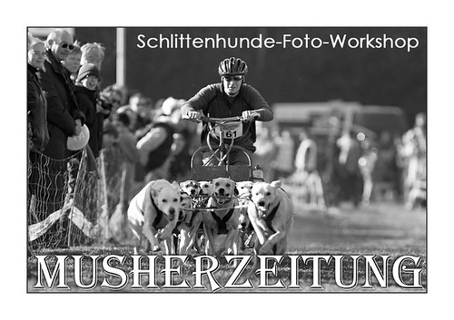 Foto-Workshop-Musherzeitung
