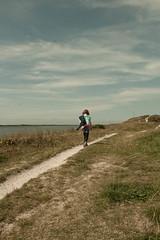 _MG_1561 (danieltreek) Tags: sun holiday holland beach nature water netherlands strand landscape see wasser sommer urlaub natur landschaft sonne nordsee niederlande northsee erholung
