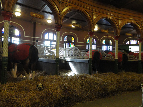 Oct 20 - Budweiser Horse Stables 6