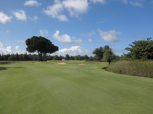 Turtle Bay Colf Course 312
