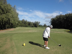 Turtle Bay Colf Course 325