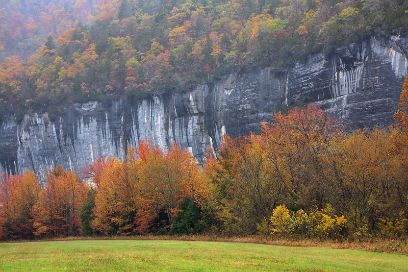 Roark Bluff Fall